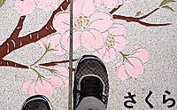 Sakurawalk_2